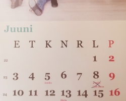 Estonian holidays in June